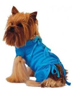 נעל לכלב לכף רגל פצועה