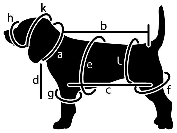 מדידת גודל מחסום לכלב אף פחוס